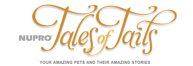 NUPRO Tales of Tails: Your Amazing Pets And Their Amazing Stories